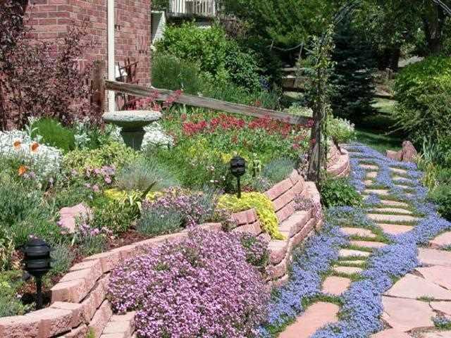 The Basics Of Gardening